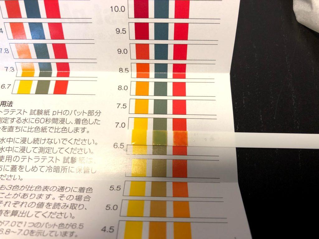 pH 測定結果 アロワナ