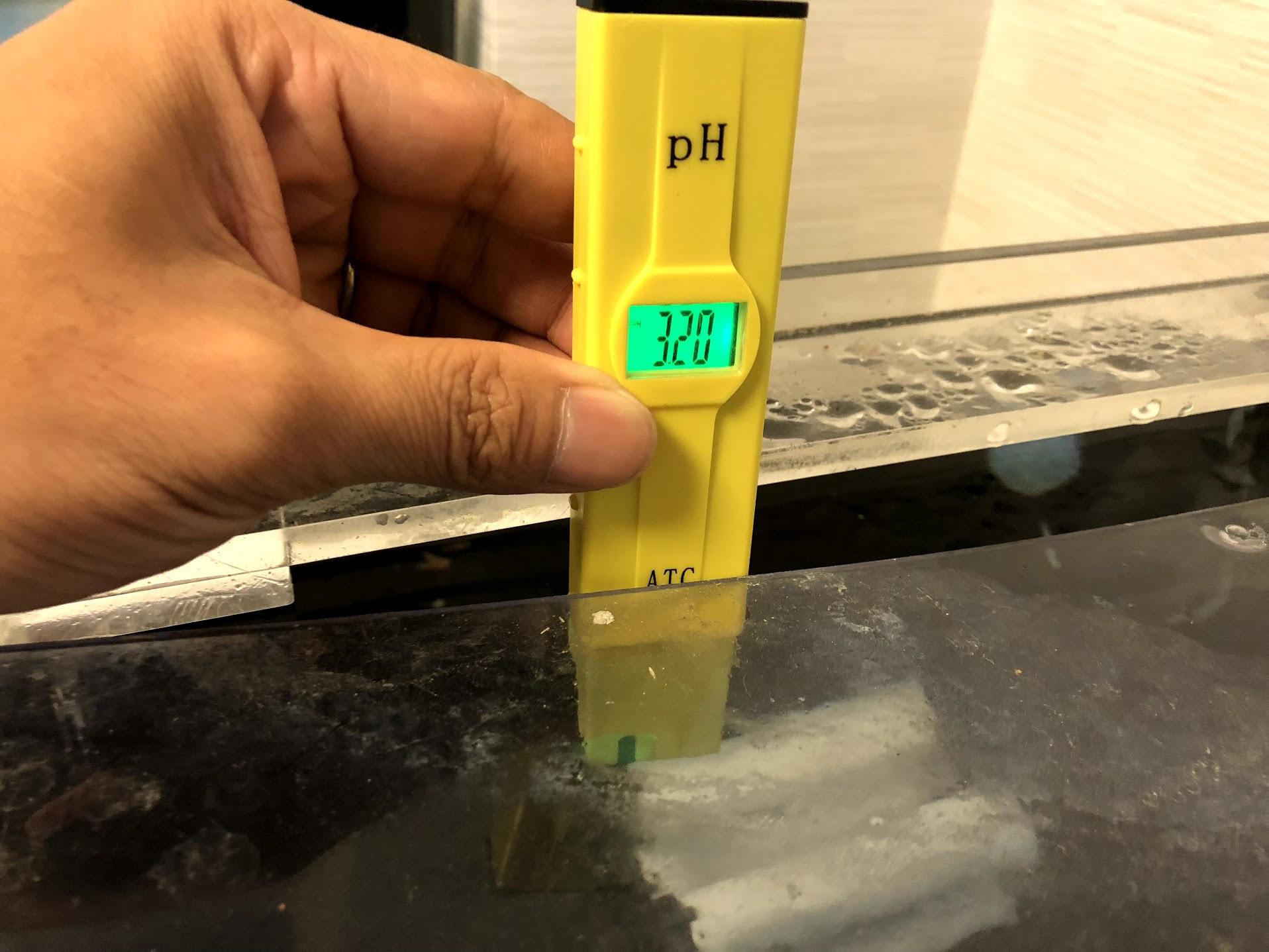 【悲報】pH3表示されるのでAukru pHメーターを初期不良で返品します